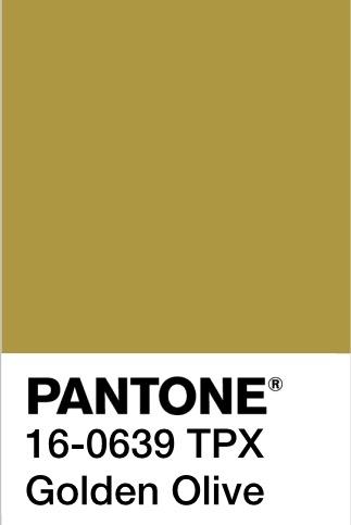 Pantone 4