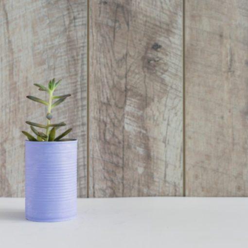 caracteristicas packaging ecológico